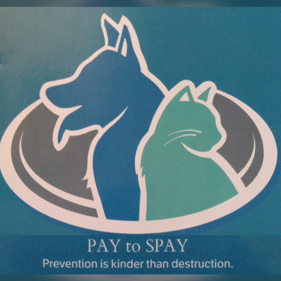 Pay to Spay Inc.